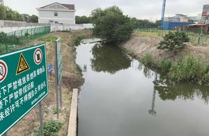 上海市人大代表抽查河道状况,竟发现了一片沿河菜地……