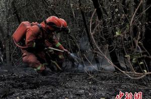 云南安宁山火明火已扑灭 转入清理值守阶段