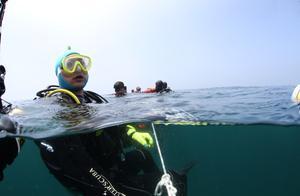海底总动员!18名潜水队员自发潜入海底打捞海洋垃圾