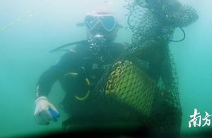 """广东渔政携手志愿者,这些海洋生物的""""死亡陷阱""""清走了"""