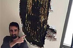 卧室传怪声西班牙夫妇两年无法安眠 扒开墙藏8万只蜜蜂