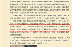 陕西2村民捕3条鲤鱼被批捕 官方:不在数量,电击捕鱼违法