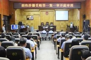 岑溪市原副市长胡伟涉嫌受贿案开庭
