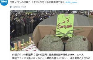 吃瓜群众惊掉下巴 日本甜瓜一对拍出30万史上最贵