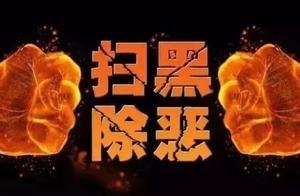 """【扫黑除恶】浙江公布""""套路贷""""典型案例!宁波这个团伙被点名"""