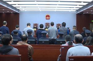 扫黑除恶共筑平安上海 一年多查处黑恶势力团伙194个