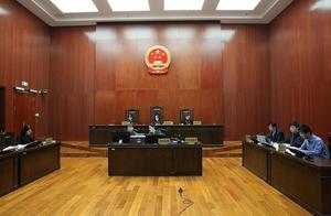 《人民的名义》被诉侵权案二审,非独创表达不受法律保护