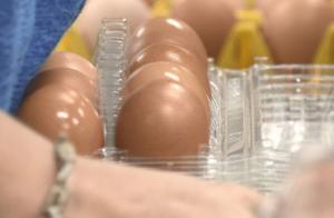 台超市员工偷吃茶叶蛋判刑3个月罚两万,网友讽:蛋蛋恐怖