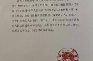 """恶势力团伙16人涉嫌""""七宗罪""""河北""""爱心妈妈""""李利娟涉恶案19日开审"""