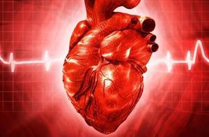 频繁高烧不退,可能是心内膜炎