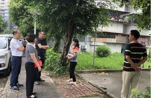 深圳一小区停车最高40元/天被指不合理,部门:未发现违法行为