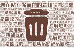 干垃圾湿垃圾 最近上海人民哭晕在垃圾桶前