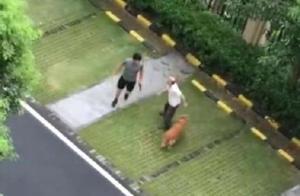 顺德警方通报打死金毛犬案最新进展:暂未发现男子殴打老人