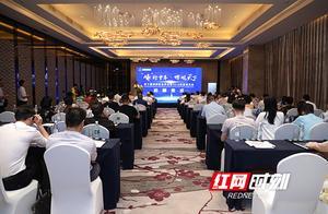 十年一剑初心依旧 第十届湖湘财富峰会正式启航