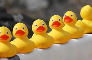 有毒!网售小黄鸭等玩具增塑剂超标百倍,洗澡时候千万别玩