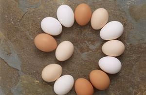 2019年5月24日全国鸡蛋价格