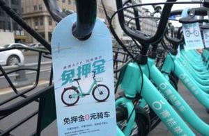 滴滴成立两轮车事业部 整合青桔单车和街兔电单车