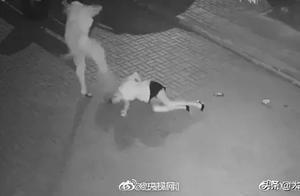 抓到了!深夜暴打女子嫌疑人落网!施暴原因令人气愤