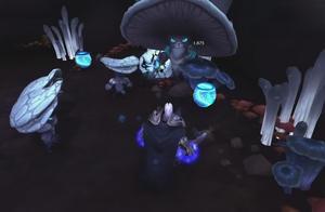 魔兽世界当阿尔萨斯遇上菇妖王,两个冒牌货的pk!