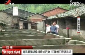 抚州:非法养猪场偷排造成污染 环保部门现场执法