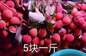 5块一斤的荔枝藏有大猫腻,卖家行为太令人发指,欺诈消费者
