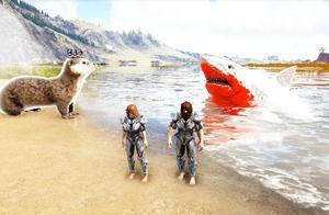 方舟生存进化-游泳比赛 精英鲨鱼VS巨型水貂 谁才是游泳冠军