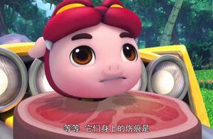 猪猪侠恐龙日记:猪猪侠把肉送给霸王龙吃,结果还是要吃了猪猪侠