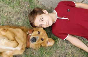 5分钟看完《一条狗的使命》单身狗该如何帮助单身狗脱单?