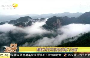 持续降雨后的湖南张家界美景:云雾缥缈在峰林如同一幅幅水墨画