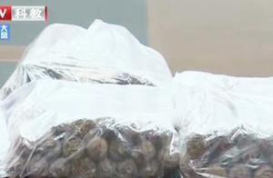 浙江:朋友圈卖自制雪茄 非法经营老板被拘