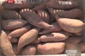 有小黑斑的红薯千万不能吃!中毒死亡率高达百分之十六,太可怕