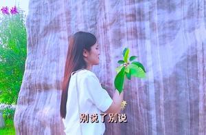 李羿慧一曲《花开花落》木棉花的春天主题曲,,唱哭多少痴情人