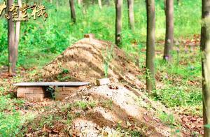 农村上坟填土有讲究 这两个位置的土不能乱动 揭秘民俗中填土禁忌