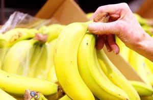 香蕉怎么挑才不会踩雷?直的甜还是弯的甜?看完以后别再挑错了