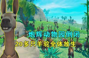 木筏求生联机68:炮辉动物园倒闭,20多只羊驼全体放生,回归自然