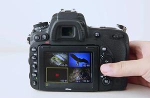 尼康D750摄影-1.22 手动对焦没用了?那这几个对焦问题如何处理?