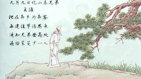 《九月九日忆山东兄弟》一诗中千古名句是什么