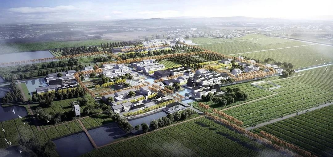 林渡暖村:农文旅融合新模式,景程文旅勾勒乡村新图景