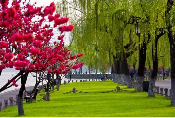杭州八景是哪些?