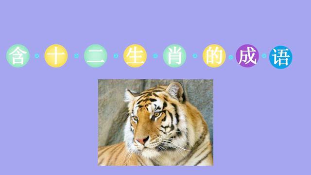 带有虎的成语有哪些