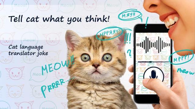 科学家研究动物语言翻译器,与宠物零距离对话不是梦