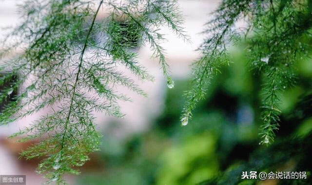 春夜喜雨打一字