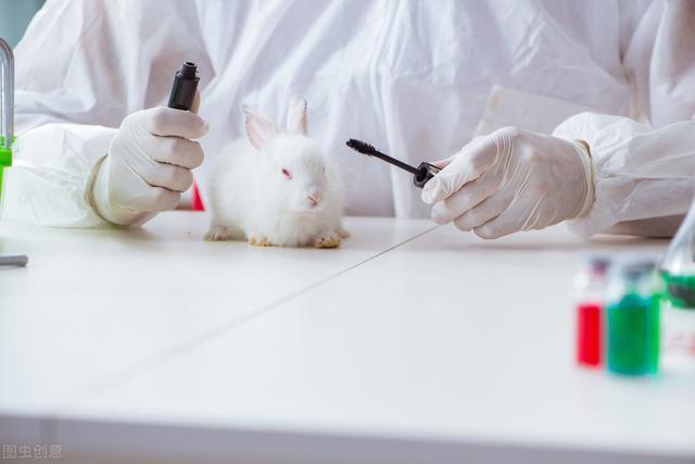 动物检疫是什么意思呢