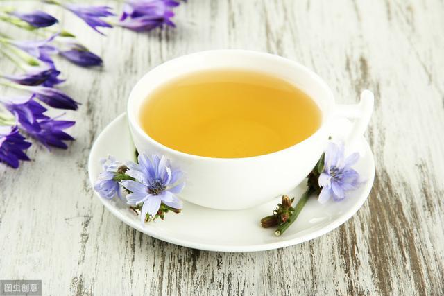 毛菊苣根可以泡茶喝吗