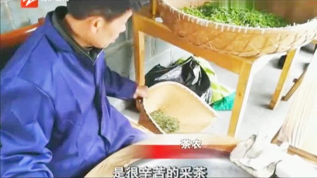 龙井茶一斤多少钱