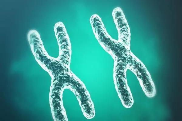 刷牙半小时,走路小碎步……超慢生活的背后竟然是「遗传的铜中毒」