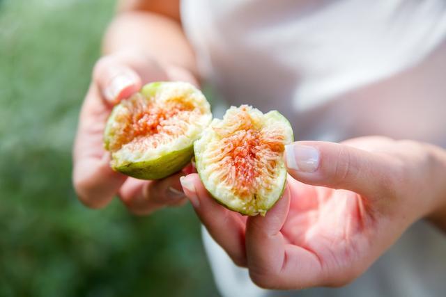 无花果是雌雄异株,我家只种了一颗无花果树,怎么授粉结果
