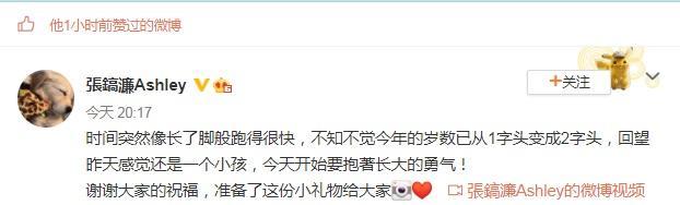 张镐濂20岁生日:亲爸莫少聪不送祝福,继父张丹峰让他感动落泪