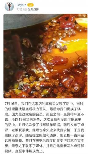 世界冠军聚餐吃火锅吃出活虫,老板竟报警称其敲诈:太职业了