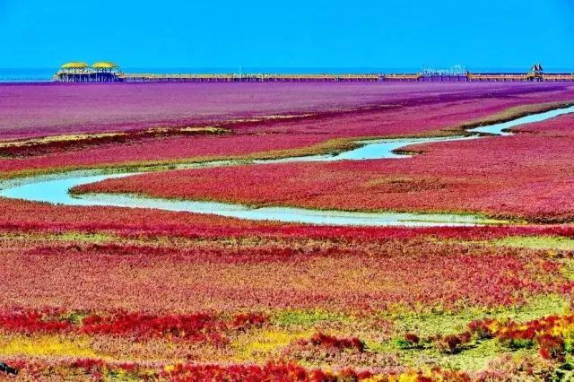 中国最美的6大沼泽湿地,每一个都美爆了!